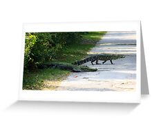 Mama and Baby Alligator Crossing the Road Greeting Card