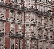Windows and Balconies by erose
