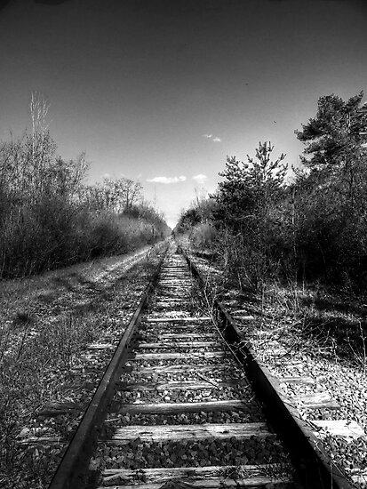 Lonely Tracks  by Marcia Rubin