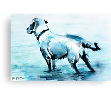 Dune Doggie Canvas Print
