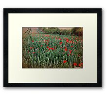 As The Wind Upon The Field Framed Print