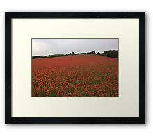 every soldier that has fallen i think their is a flower here for them Framed Print