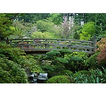Bridge Over Peaceful Waters Photographic Print