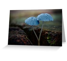 Fungi Season 1112 Greeting Card