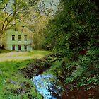 Serene Summer Landscape by Rick  Todaro