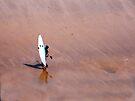 Blue Kayak on the Beach by TREVOR34