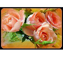 Peachy Roses Photographic Print