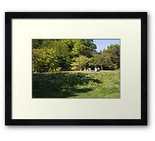 Among the Meadow Flowers Framed Print