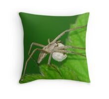 wolf spider with child bag Throw Pillow