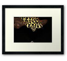 Jungle Python Framed Print