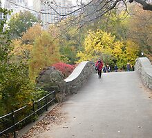 Central Park Bridge, Fall Colors  by lenspiro