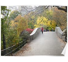 Central Park Bridge, Fall Colors  Poster