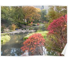 Central Park , Fall Colors  Poster