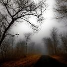 Misty Road by Benjamin Young