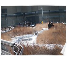 High Line in Snow, New York's Elevated Garden and Walking Path Poster