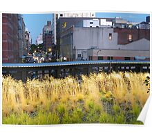 High Line, New York's Elevated Garden and Walking Path Poster