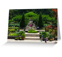 Garden View By Jonathan Green Greeting Card