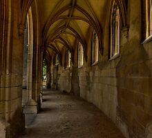 Gothic pathway 2 by mariocassar