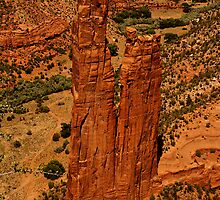 Twin Towers of Canyon de Chelly by Tim Scullion
