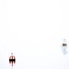 White Horizon by Luke Stephensen