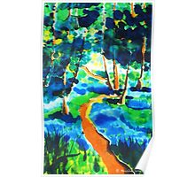 The winding path on silk Poster