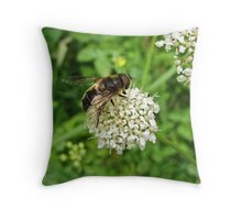 Bee Fly Throw Pillow