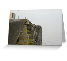 Edithburg jetty SA - dull jetty Greeting Card