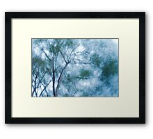Wind in the trees Framed Print