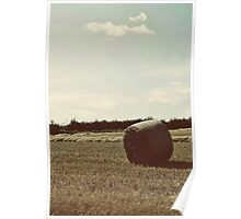 Hay bale lying under the sky Poster