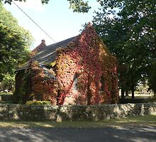 Gostwyck Chapel, Uralla by louisegreen