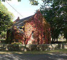 Gostwyck Chapel, Uralla by louisegreen