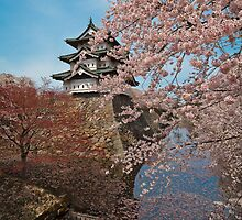 Hirosaki Castle by Spirit300