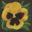 Yellow Pansy by Tanja Udelhofen