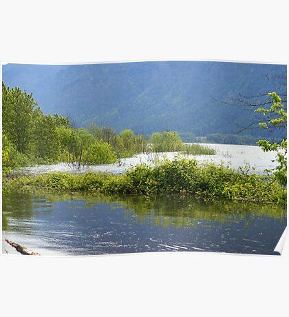 Cowlitz River near Longview, WA Poster
