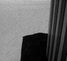 Beachhut Shadow Carentec 1 by ragman