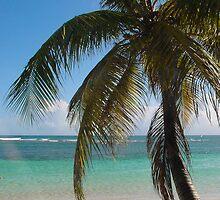 Sainte-Anne Beach by 29Breizh33