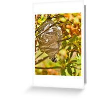 HORNET AND NEST Greeting Card
