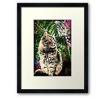 The Cat knocked all the Colored Glass from my Window Framed Print