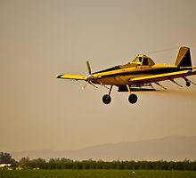 Crop Dusting by Howard Lorenz