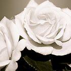 Roses (black&white) by Lou Wilson