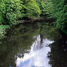 River Almond- A view from the bridge by biddumy