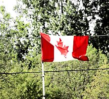 Canadian flag by KrysM