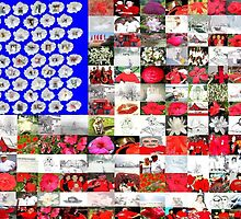 A family photograph American flag doodle by Samohsong