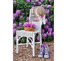 Summer Garden Photographic Print