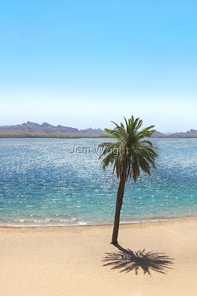 Havasu Palm by Jem Wright