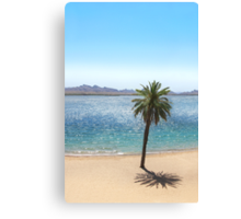 Havasu Palm Canvas Print