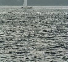 Sailboat and Waves by Frank Romeo