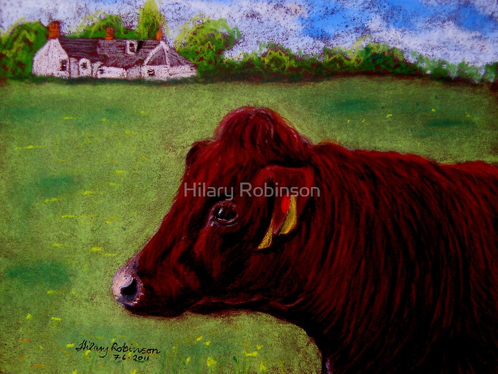 Ruby Coo by Hilary Robinson