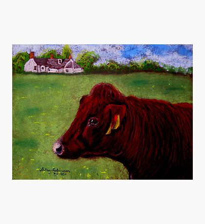 Ruby Coo Photographic Print