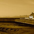 Fishermans Way by Lou Wilson